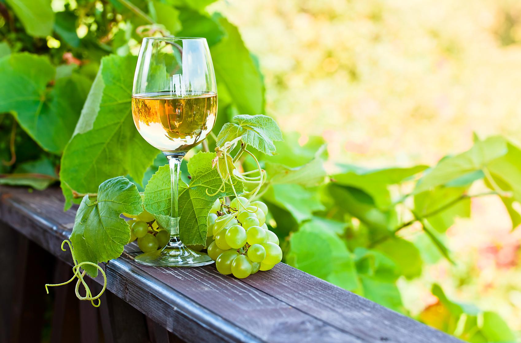 Napój sarmaty. Charakterystyka białego wina.